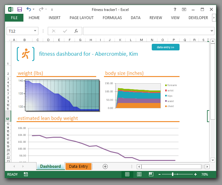ActiveX Charting inside MS EXCEL